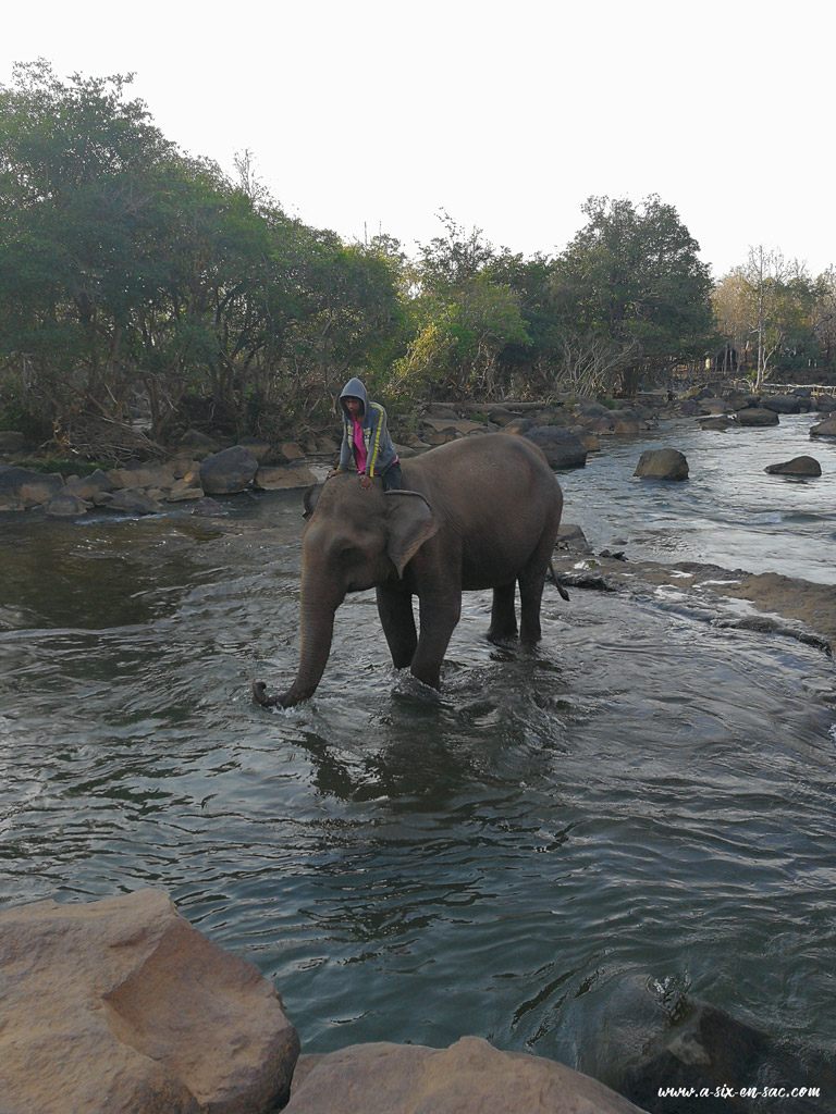 bain des éléphants à Tadlo 2