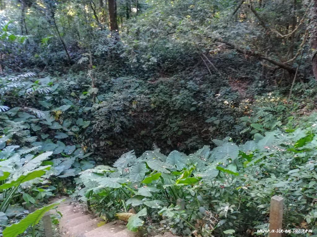 """entrée de la grotte de la """"green zone"""" sur la route de Tad Lo sur la boucle du plateau des Bolovens au Laos"""