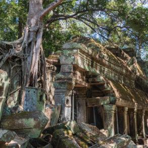 Temple d'Angkor à Siem Reap - Cambodge fiche pratique
