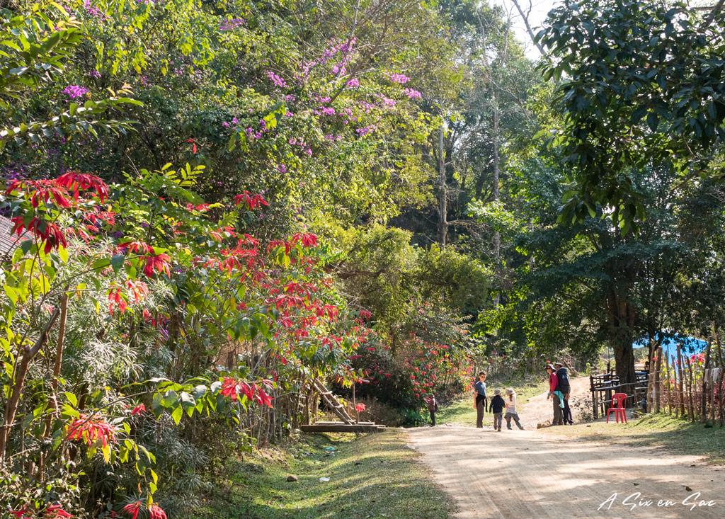 sur la route de Ban Na avant la grotte de Tham Kang entre Muang Ngoi Neua et Ban Na