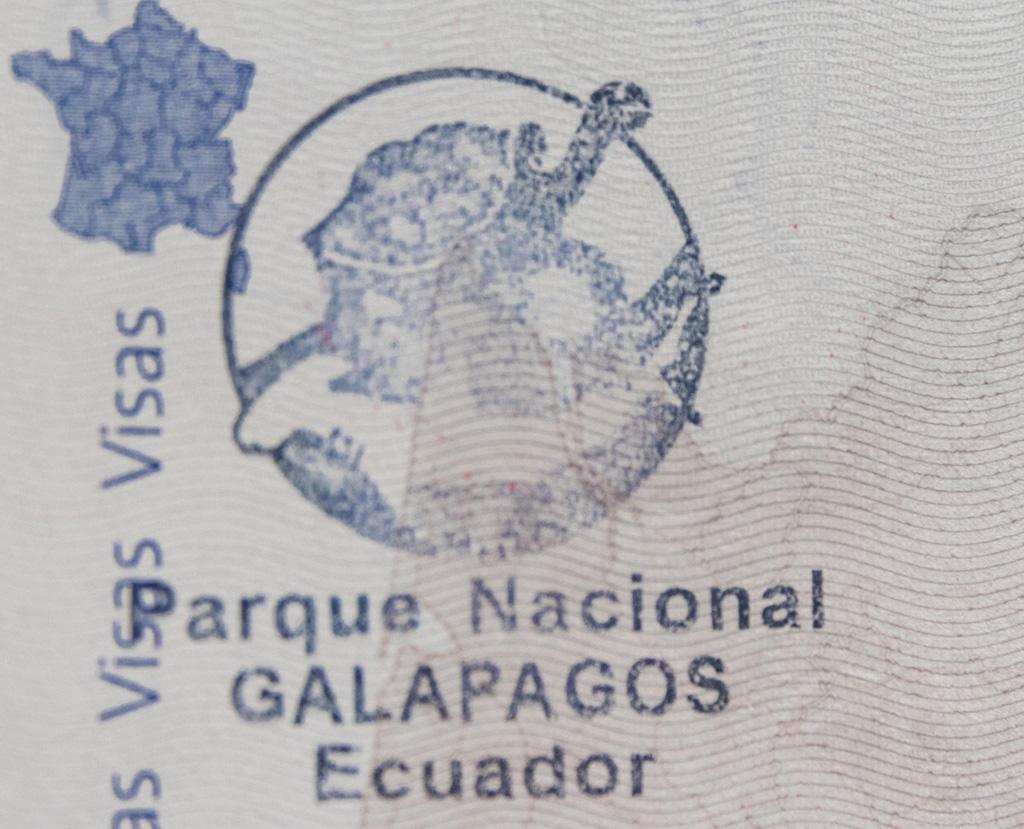 tampon délivrer lors de notre Arriver aux Galapagos en période de Covid-Arriver aux Galapagos en période de Covid