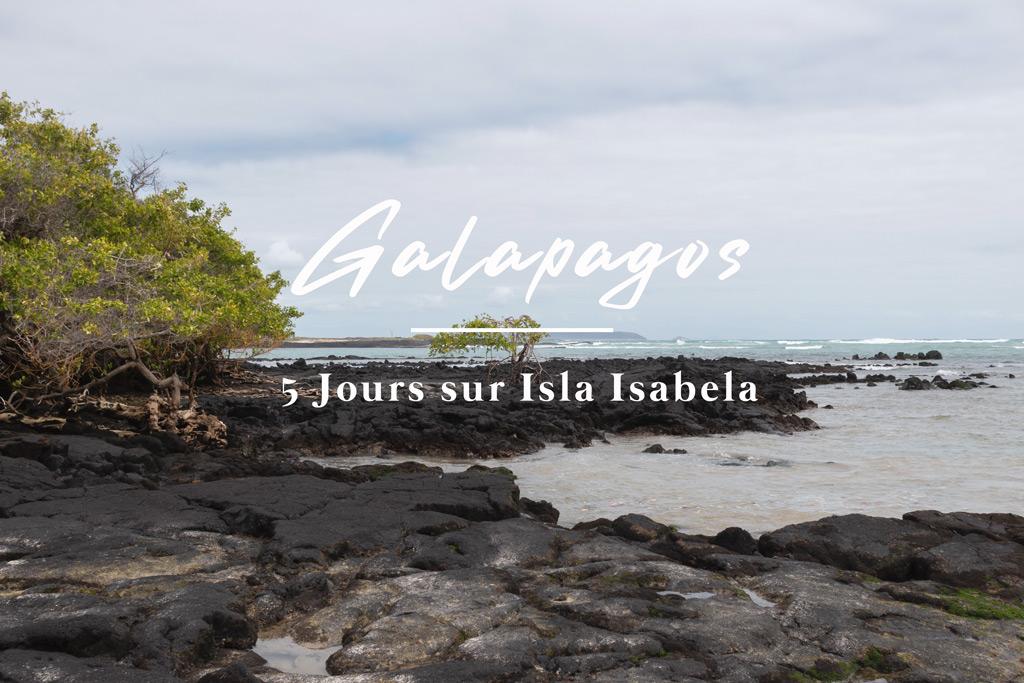 Galapagos Isla Isabela 2020