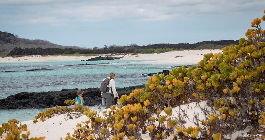 Marie et les petits sur la plgae de Cerro Brujo - Galapagos San cristobal Equateur novembre 2020