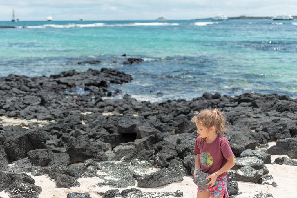 la playa de la estacion ( centre Darwin ) Puerto Ayora, Santa Cruz, Galapagos , novembre 2020