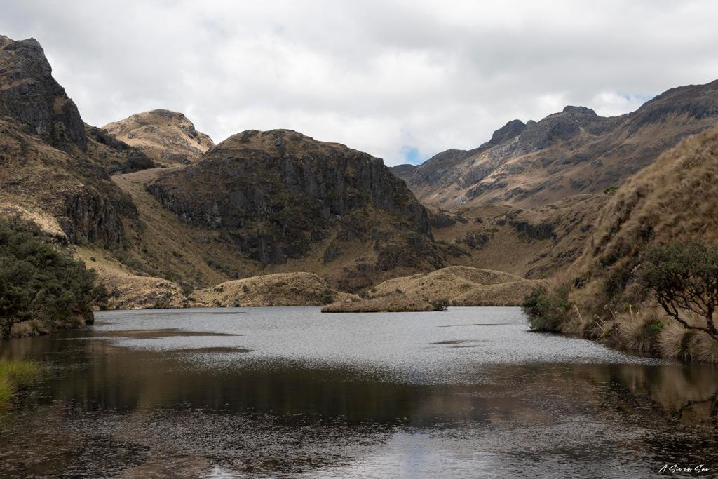laguna Unidas das le parc de Cajas ( alentours et environ de Cuenca ) en Equateur