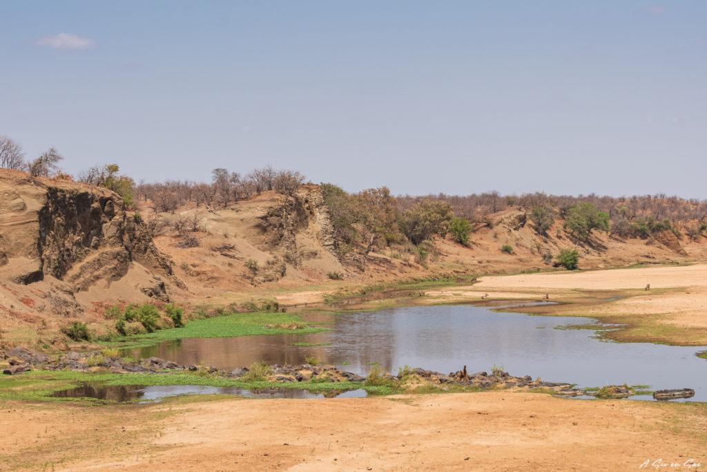 la letaba : rivière au centre du parc national Kruger pendant notre safari