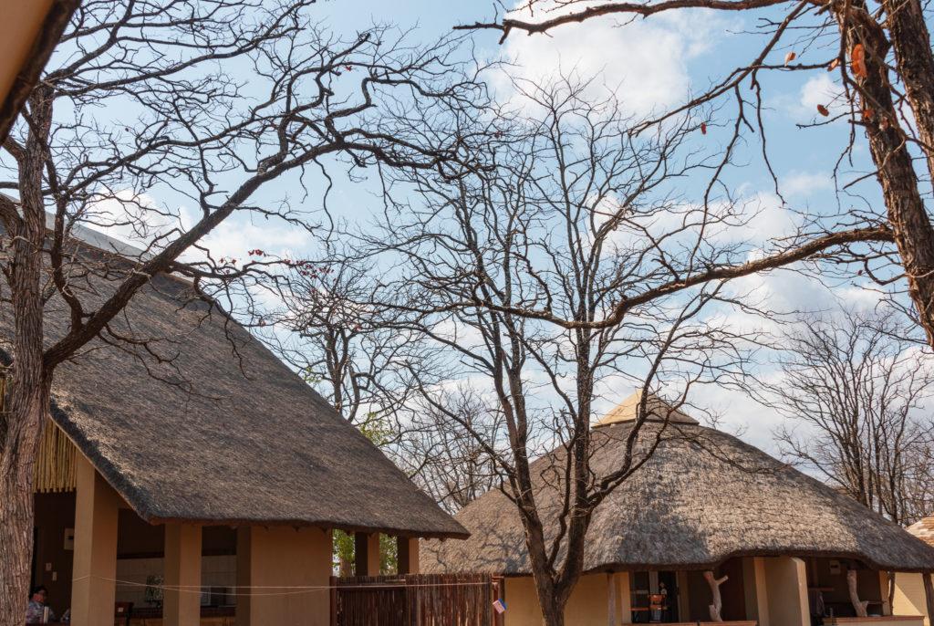 Safari au nord du parc Kruger : le rest camp de Shingwedzi