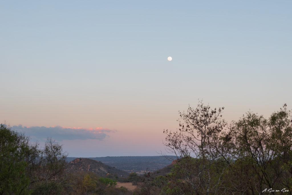 coucher de soleil lors de notre safari privé et improvisé dans la game farm Boekenhoutbult en afrique du sud
