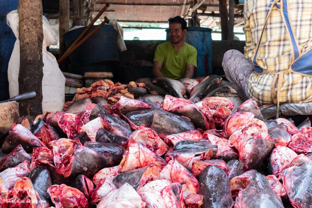 artisan pêcheur de Battambang-Cambodge devant une pile de tête de poissons