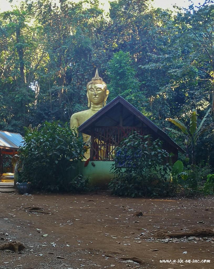 """temple et bouddha dans la """"green zone"""" sur le chemin de Tad Lo"""
