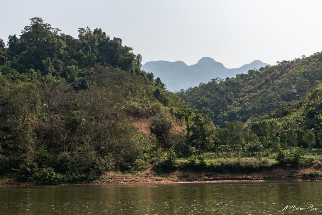 Rive de la Nam Ou en direction de Muang Ngoi Neua