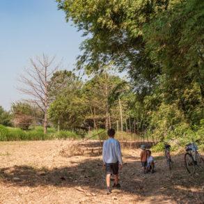"""pause vélos pour aller contempler le """"big tree"""""""