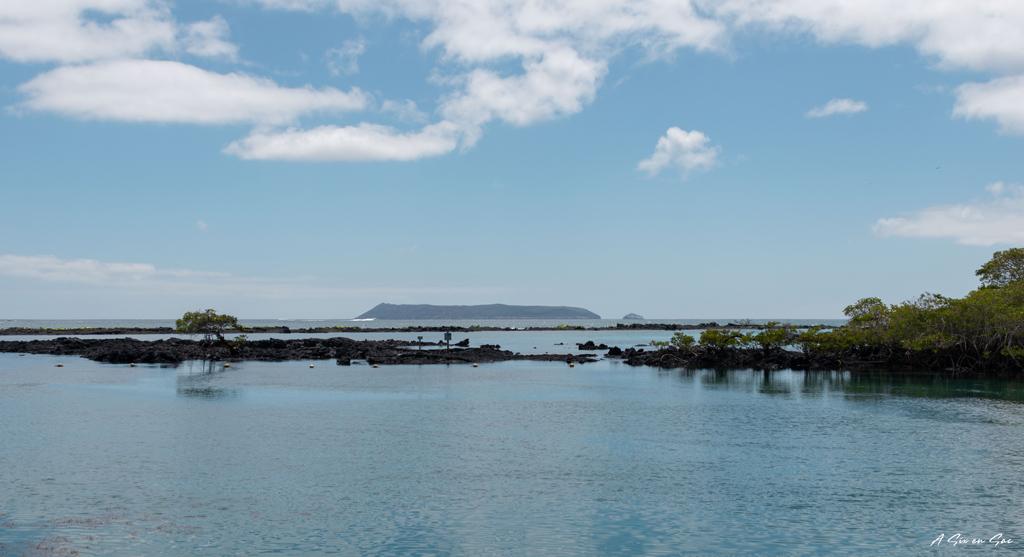la concha de perla depuis le ponton sur Isla Isabela Galapagos en novembre 2020