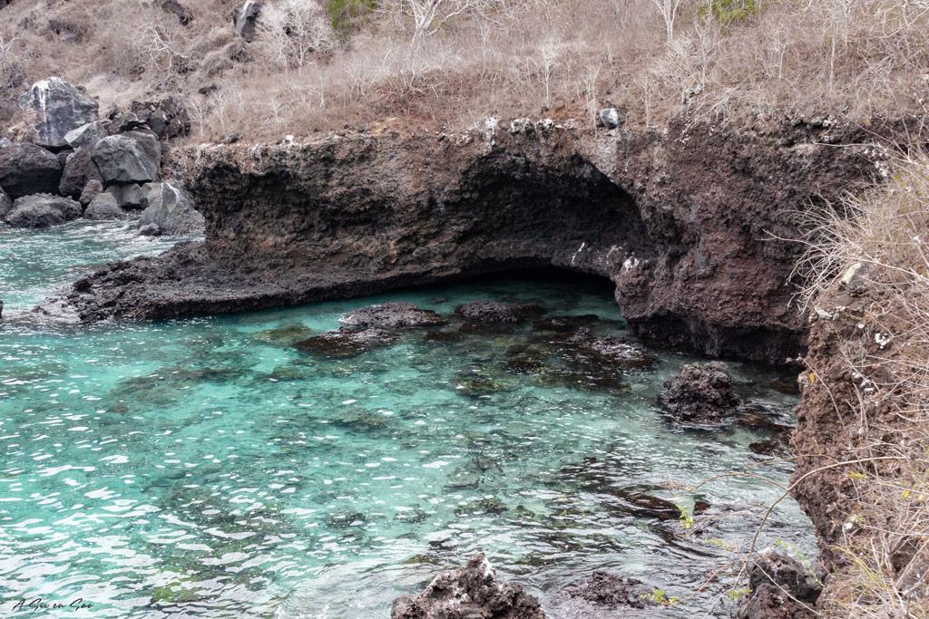 les Tijeretas Galapagos San cristobal Equateur novembre 2020